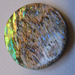Abalone_button